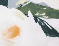 Close up of tea rose print on Rosanna Bedding Collection.