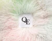 Close up of QE Home logo.
