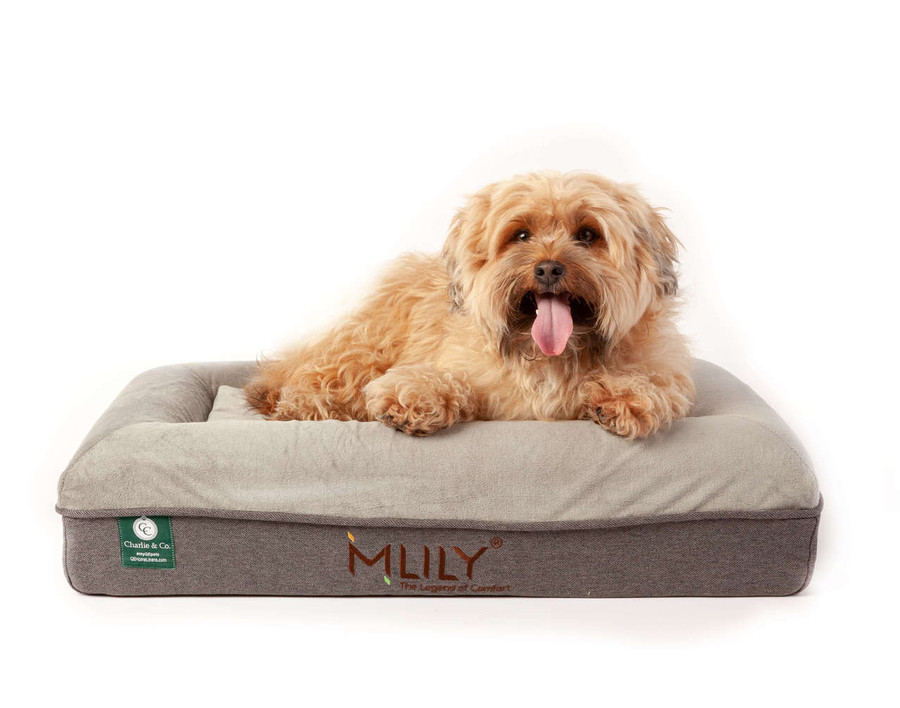 Charlie & Co Ergonomic Memory Foam Pet Bed