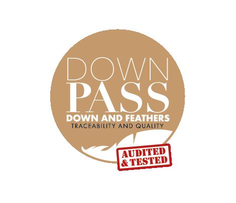 Downpass logo