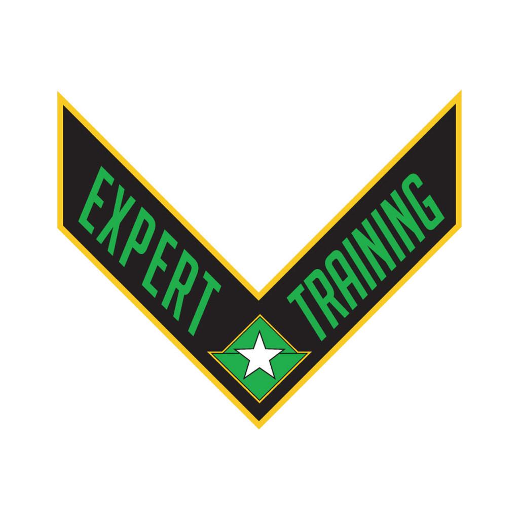 PMA Training Patches - Expert