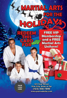 Martial Arts for the Holidays V1