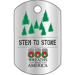 Stem to Stone Logo Keychain