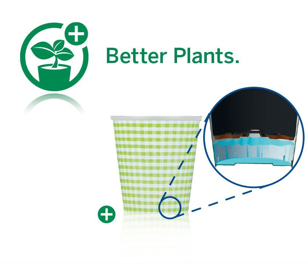 Water drainage pots