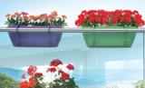 Railing planters green purple , balcony rail.