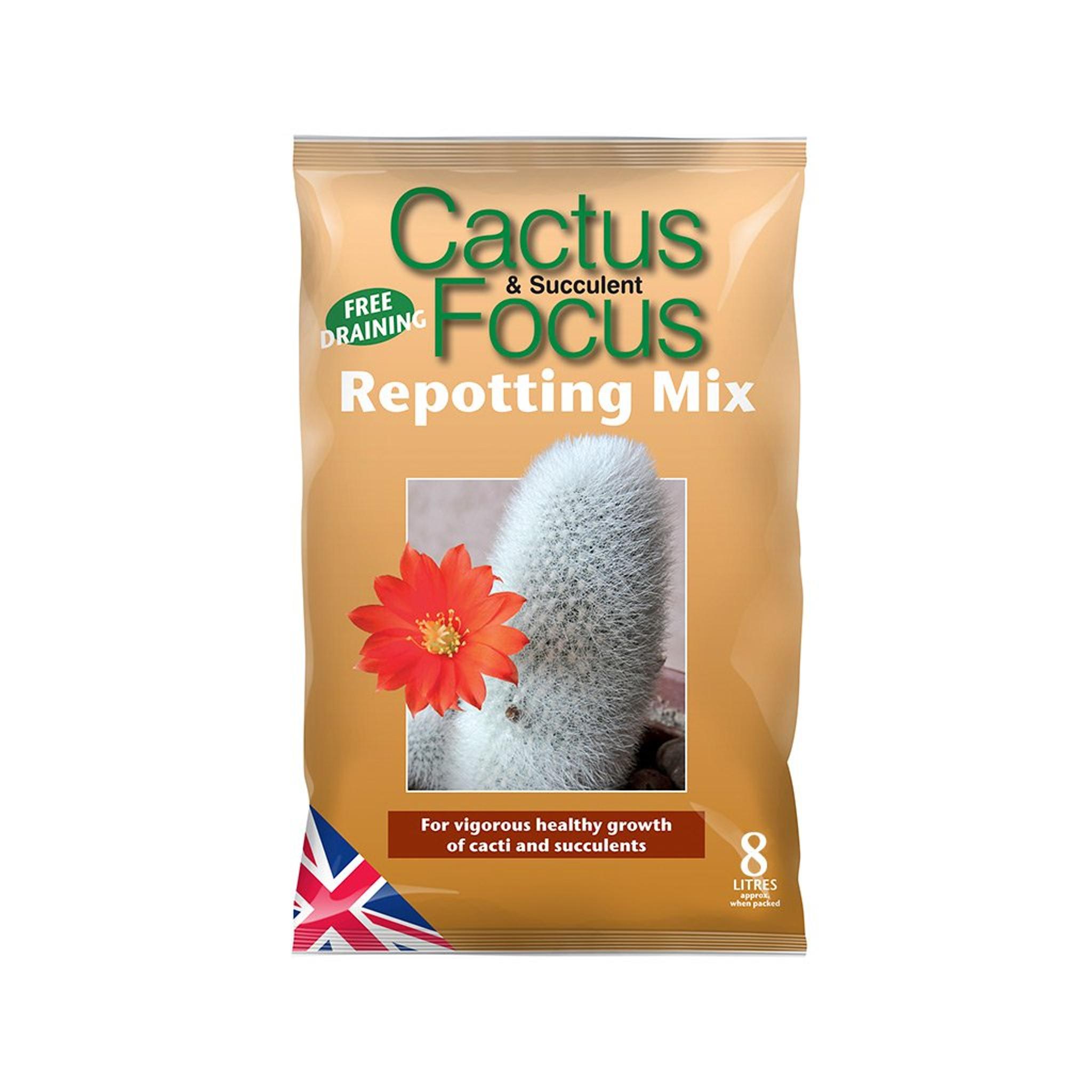 Cactus & Succulent Focus - Repotting Mix