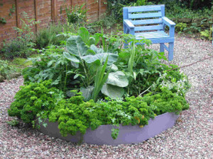 Planted raised bed