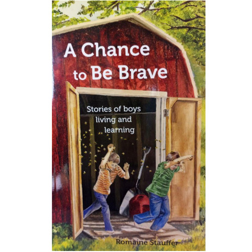 A Chance to Be Brave book