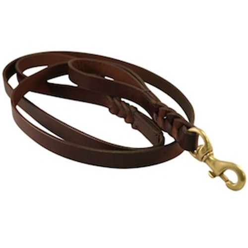 Angel Braided Double Handle Leather Lead 6'