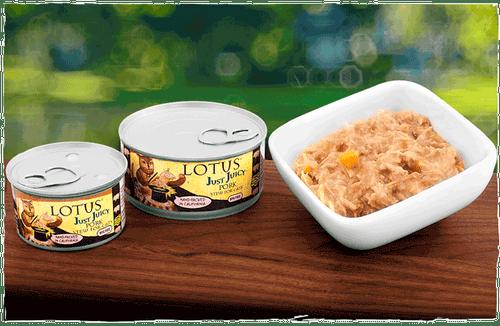 Lot Cat JJ Pork Stew 5.3oz