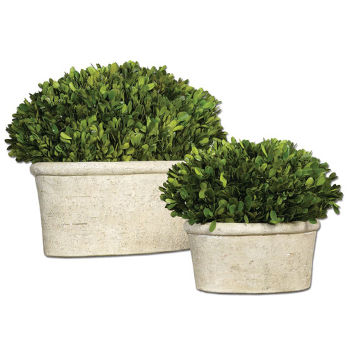 Uttermost 60107 Preserved Boxwood Oval Domes Accessory