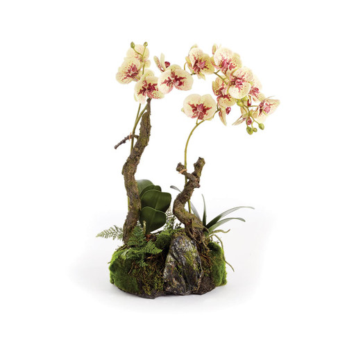 Napa Home and Garden CC207YW Phalaenopsis 23 Inch Tall Orchid Drop-In