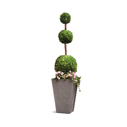 Napa Home and Garden 7587PG 96 Inch Tall English Boxwood Triple Ball Topiary