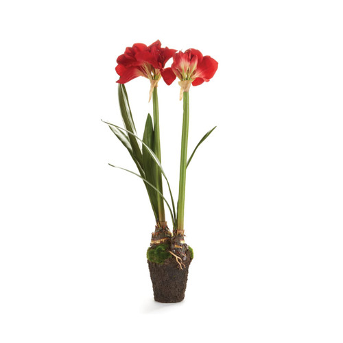 Napa Home and Garden CC202RD Amaryllis 37 Inch Tall Faux Floral Drop-In