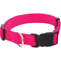 Westminster Pet Ruffin' it Adjustable 18 In. to 26 In. Nylon Dog Collar 34143