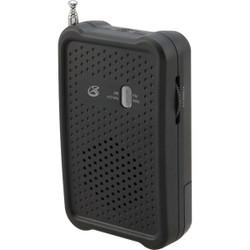 GPX AM/FM Portable Radio R055B