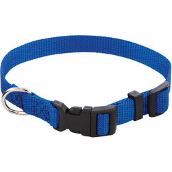 Westminster Pet Ruffin' it Adjustable 10 In. to 16 In. Nylon Dog Collar 31441