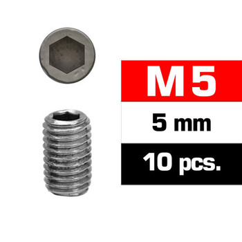 Ultimate Racing M5X5MM Set Screws (10 PCS)