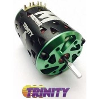 """Team Trinity """"Monster Max"""" Certified Plus ROAR Spec Brushless Motor (13.5T)"""