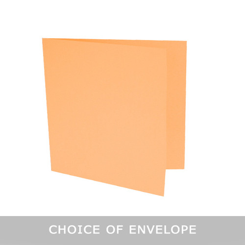 Large square peach blush matte card blanks with envelopes