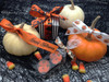 """Pumpkins in a Row Ribbon, in a row on 5/8"""" White single face satin, 10 Yards"""