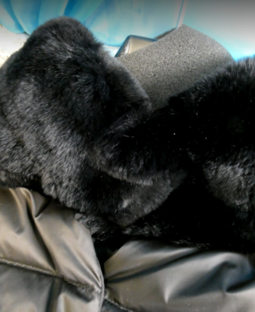 SIZE 12! 1pc $650 WEEKEND MaxMara Rabbit Fur COAT #16419F (Q-1-5)
