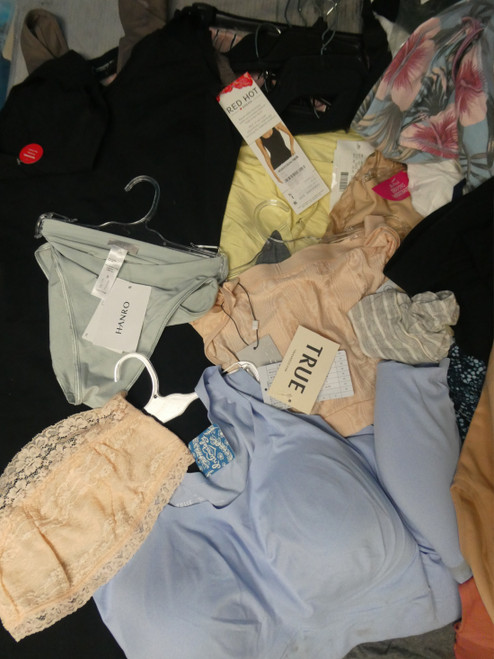 54+pc Intimates & Sleep HANRO True SPANX CK & NIKE More #20132N (E-5-5)