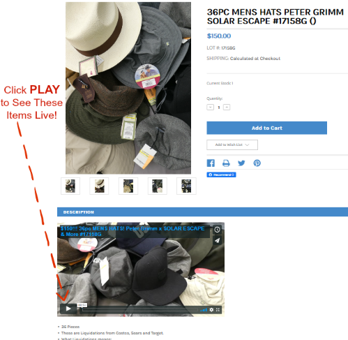 how-to-watch-wholesale-videos.png