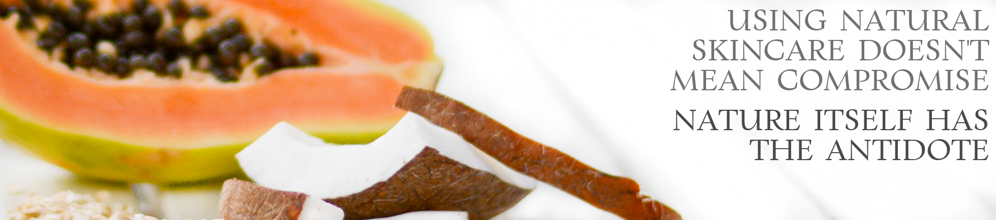 papaya-coconut-oats-dsc-2310-crop-bright.png