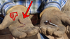 Cat's Claw Fasteners 2 inch for Softwoods 170 Count, Replaces The Common Fencing Staple! Installs Fast, with a Power Drill. 4X Stronger Than a Staple!