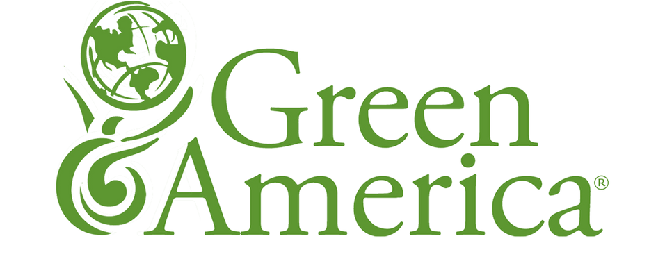 Natural Earth Paint Founder Interviews with Green America's Green Business Network!