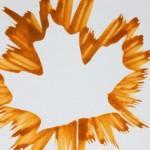 leaf-bursts-medium.jpg