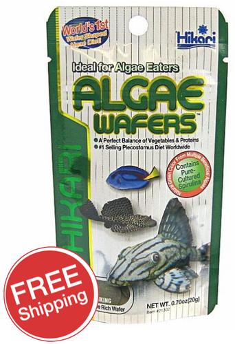 Hikari Algae Wafers 20gm (KH21302)