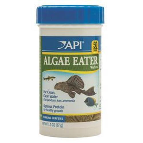 API Algae Eater Wafers 37gm