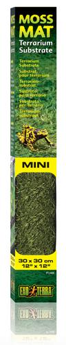 Exo Terra Forest Moss Mat Mini 30cm x 30cm (PT2480)