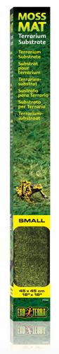 Exo Terra Forest Moss Mat Small 45cm x 45cm (PT2482)