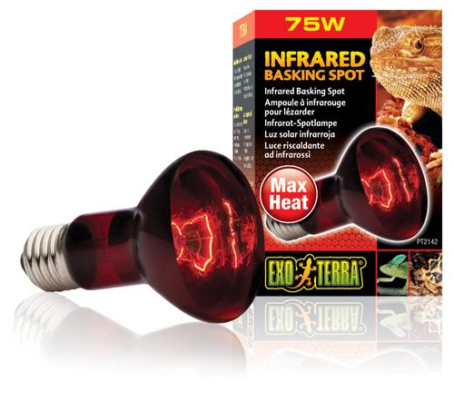 Exo Terra Heat Glo Infrared Heat Lamp - 75 Watt (PT2142)