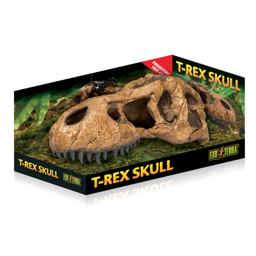 Exo Terra T-Rex Skull (PT2859)