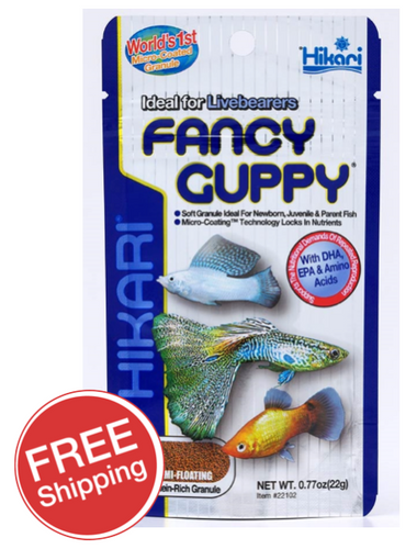 Hikari Fancy Guppy 22gm (KH22102)