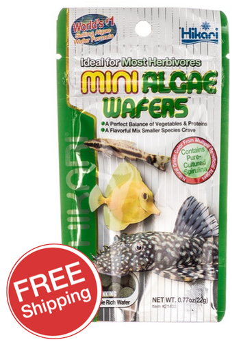 Hikari Mini Algae Wafters 22gm (KH21403)