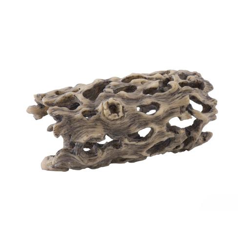 Exo Terra Cholla Cactus Skeleton - Small (PT2986)
