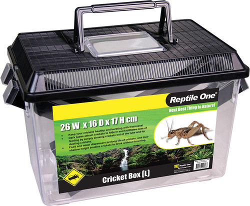 Reptile One Cricket Holding Box - Large (10344)