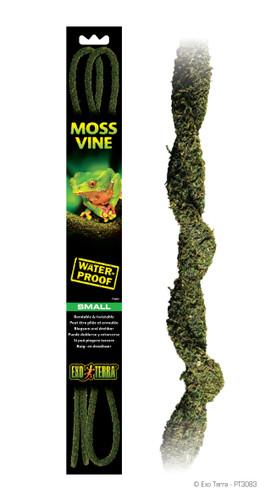 Exo Terra Moss Vine Small 200cm x 1cm (PT3083)