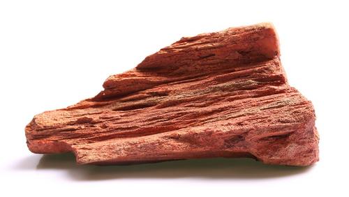 Aqua One Petrified Wood Ornament - Large (37153L)