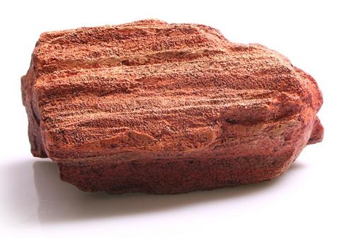 Aqua One Petrified Wood Ornament - Medium (37153M)