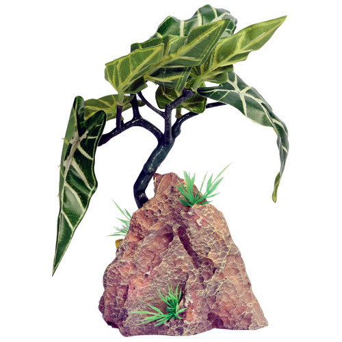 Reptile One Alocasia With Resin Base (46771)