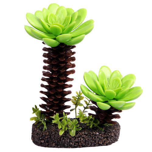 Reptile One Succulent Tree With Sand Base Medium (46775)