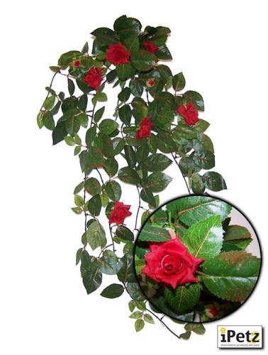 URS Red Rose leaf 690mm (14.06)