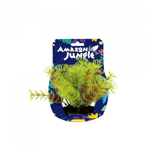 Amazon Jungle Myriophyllum Display 10-12cm