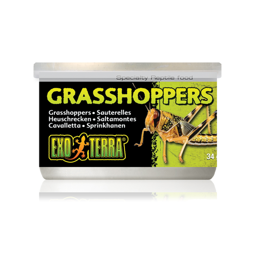 Exo Terra Canned Grasshoppers 34g Reptile Lizard Food